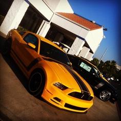 2013 #Boss302 Mustang