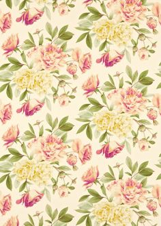 Marvelous Phoebe Rose/Lilac   Zoffany Wallpapers   A Large Scale Floral Trail, With  Vibrant Peony Blooms. Shown Here In Pale Rose Pink And Lilac On An Off  White ...