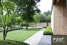 Garden Design Ideas : Modern garden with simple clean lines House Landscape, Landscape Plans, Landscape Design, Back Gardens, Small Gardens, Outdoor Gardens, Modern Landscaping, Backyard Landscaping, Contemporary Garden Design