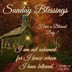 956 Best Sunday Blessings Images In 2019 Happy Sunday Quotes