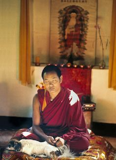"""""""What is meditation? Meditation is simple. It means maintaining memory of the object you're focused on; here, the clean clear nature of mind."""" - Lama Thubten Yeshe, from this month's featured teaching - 'Meditation on the Clarity of Mind.' Read more!   http://www.lamayeshe.com/shorty/eLetter/no121/June2013/"""
