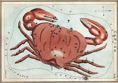 Looking for the constellation Cancer?  How to find it here.  Plus Cancer's place in sky history, lore and science.