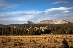 Tuolumne Meadows / Yosemite National Park