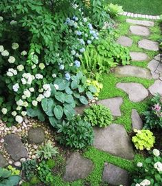 Walkway and flowers Diy Garden, Garden Cottage, Lawn And Garden, Shade Garden, Dream Garden, Garden Paths, Water Garden, Backyard Shade, Cacti Garden