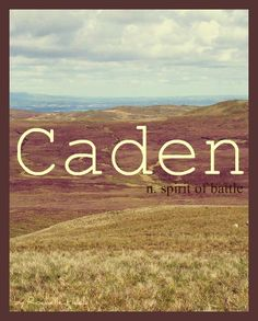 Baby Boy or Girl Name: Caden or Cayden. Meaning: Spirit of Battle. Origin: Irish; Welsh. http://www.pinterest.com/vintagedaydream/baby-names/