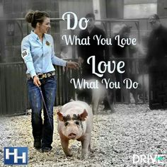 "My dad told me "" I don't care what you do when you grow up, as long as you love what you are doing. Livestock Judging, Livestock Farming, Showing Livestock, Show Steers, Show Goats, Pig Showing, Country Quotes, Farm Quotes, Country Life"
