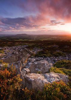 Rural Shropshire landscape - England