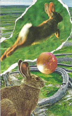 SoulCollage - The Rabbit - Chakra Eye) Companion Suit. I Am One Who gives you insight and helps you take the leap of faith to trust in what you see. Soul Collage, Leap Of Faith, Animal Cards, What You See, View Source, Photomontage, Moleskine, Chakra, Rabbit