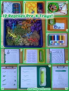 Our summer of animal preschool themes continues with our 12 Reptiles Preschool Trays! We have a simple but utterly fun sensory bin plus fine motor activities. Reptiles Preschool, Les Reptiles, Preschool Curriculum, Preschool Themes, Preschool Lessons, Reptiles And Amphibians, Preschool Classroom, Kindergarten Activities, Homeschooling