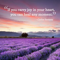 """""""If you carry joy in your heart, you can heal any moment."""" Short Inspirational Quotes, Uplifting Quotes, Inspiring Quotes About Life, Motivational Quotes, Powerful Quotes, Inspirational Thoughts, Positive Quotes For Life Encouragement, Encouraging Quotes For Women, Positive Sayings"""