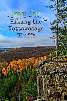 Hiking Nottawasaga Bluffs in Ontario, Canada