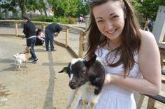 Baby goat // White summer dress