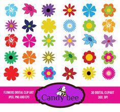 Spring summer flowers commercial use mothers day digital clipart flower clipart flora clip art flowers digital clipart daisies cinquefoils and hibiscus commercial and mightylinksfo Choice Image