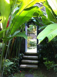 lush green plants/palms upon entry to the villa Bali Garden, Balinese Garden, Diy Garden, Home And Garden, Colorful Plants, Tropical Plants, Tropical Gardens, Green Plants, Tropical Garden Design