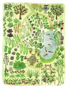 "Garden layout design, illustration from ""The Wildlife Friendly Vegetable Gardener"" book"