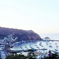 You can explore land, see, and sky—all in one day - Catalina Island Guide - Sunset