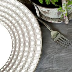 Haviland Duomo Dinnerware | Artedona.com