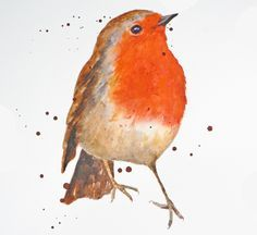 Art Demo - How to Paint a Robin in Watercolour