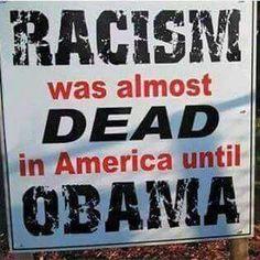 Sooooooooooo true!   Do you think the black half of him hates the white half, similar to what he resurrected in our country?!