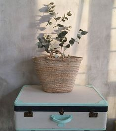 Wall distressed fairies and Painting Concrete Walls, Distressed Walls, Room Decor, Wall Decor, Industrial Design, Paint Colors, Planter Pots, Arts And Crafts, Basket