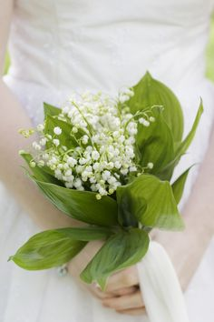 the timeless favourite: lily of the valley wedding bouquet I've had two weddings, and both time I forgot that I wanted this bouquet! Small Bridal Bouquets, Wedding Bouquets, Wedding Flowers, Second Weddings, Simple Weddings, Lily Of The Valley Wedding Bouquet, Wedding Games Signs, British Wedding, Hand Bouquet