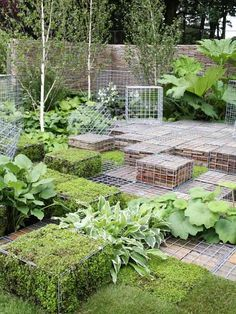 gabionenkörbe verwenden garten ideen pflanzen