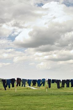 Typically Dutch: hanging your freshly washed clothes to dry outside. #greetingsfromnl