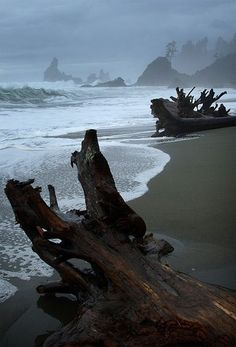 Shi Beach at the pacific coast of the Olympic Peninsula could be a considerable option for you. Shi Shi is one of the most scenic and most gorgeous beaches in Washington state bounded with beautiful sea stacks, tide pools and caves Patterns Background, Beautiful World, Beautiful Places, Beautiful Scenery, Ocean Beach, Beach Walk, Washington State, Washington Beaches, Seattle Washington