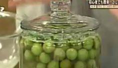 小梅を使ったさしすカリカリ梅干しの作り方・梅干しのだ液パワー – ごごナマ | 若返りTV