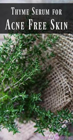 Thyme Serum for Acne Free Skin - Thyme is known to be just as effective as benzoyl peroxide for fighting acne and clearing the skin without the side effects.