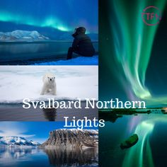Today Stacey takes us to The Northern Lights! This must be o n everyone's bucket list! The bright dancing lights of the aurora are actually collisions between electrically charged particles from the sun that enter the earth's atmosphere. Group Travel, Travel Agency, Aurora Borealis, Holiday Travel, Just Go, Northern Lights, Dancing, Bucket, Earth