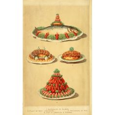 Cassells Dictionary of Cookery 1892 Salmon Beef Veal & Prawns Canvas Art - (24 x 36)