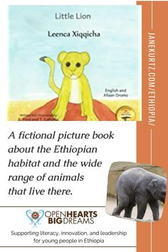 LITTLE LION is a Ready Set Go book about a lion cub quest to find his mother. He encounters a number of unique animals who help guide him along his way. Open Hearts Big Dreams is a nonprofit organization supporting literacy, innovation, and leadership for young people in Ethiopia. When you buy a Ready Set Go book, you provide critical funding for their endeavors. Learn more here. | refugee | literacy | reading | Mr Bones, Lion Cub, Fiction And Nonfiction, Librarians, Two Year Olds, Unique Animals, Used Books, Young People, Ethiopia