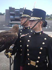 Ingreso de personal femenino al Heroico Colegio Militar
