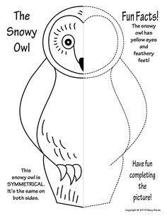20 activities your kids will love.  Arctic animals, snowy owl, symmetry, art and classroom sub lessons.
