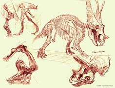 Museum Sketches 3 by Red-Dilopho on DeviantArt