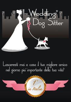HOME - Wedding Dog Sitter ®