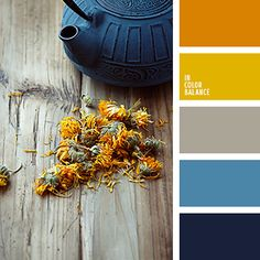 ideas for exterior house colors palette orange