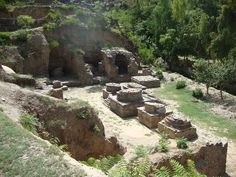 butkara heritage sites