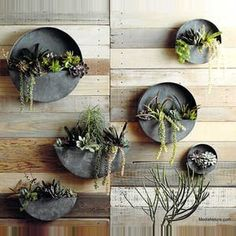 Roost Orbea Zinc Circle & Half-Circle Planters