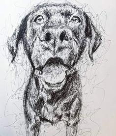 Animal Drawings, Art Drawings, Scribble Art, Drawing Skills, Meraki, Dog Art, Great Artists, Artsy Fartsy, Graphite