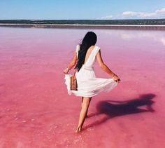 Budget campervan hire: the best way to see Australia Kalbarri National Park, Campervan Hire, Pink Lake, Perth Western Australia, Lilac, Purple, Bubblegum Pink, Bubble Gum, Spectrum