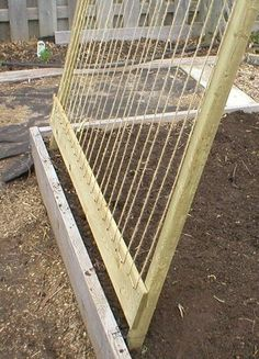 Pea Trellis 2 by greengardenvienna, via Flickr