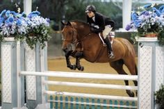 Karen Healey: Use the Right Rein Release for the Job from Practical Horseman | EquiSearch.com