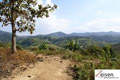 Landschaft im Norden von Thailand Thailand, Country Roads, Tour Operator, Landscape, Travel