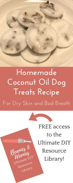 These Homemade Coconut Oil Dog Treats are the best (and easiest) cure for your dog's bad breath and dry skin!These Homemade Coconut Oil Dog Treats are the best (and easiest) cure for your dog's bad breath and dry skin! Homemade Coconut Oil, Coconut Oil For Dogs, Labrador Retriever, Golden Retriever, Homemade Dog Cookies, Homemade Dog Food, Homemade Dog House, Homemade Baby, Diy Dog Treats