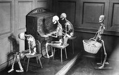 + Some skeletons having fun. +