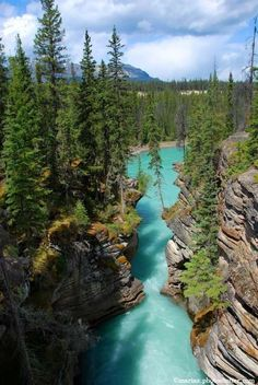 Athabasca River, Columbia Glacier of the Columbia Icefield in Jasper National Park in Alberta, Canada by Mary Koutzarov on 500px