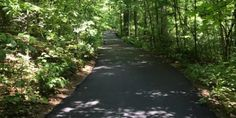 New Paved Trails at Friendship Gardens - PanoramaNOW Entertainment News Wilderness Trail, Michigan City, Previous Year, Botanical Gardens, Natural Beauty, Friendship, Country Roads, Entertainment, News