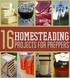Survival Life: 16 Cool Homesteading DIY Projects For Preppers. Try out these cool projects for your homestead and survival preps for some productive fun. Survival Gear and Prepping Ideas | Survival Life | http://survivallife.com/2014/05/22/16-cool-homesteading-diy-projects-for-preppers/